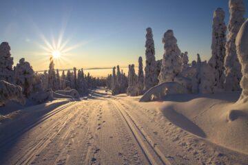 Vinterferie gaspejs